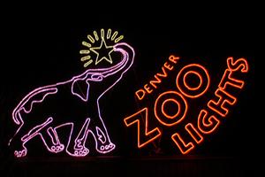 zoolights1